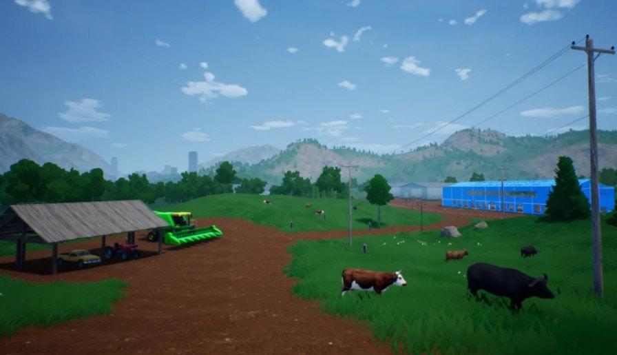 肉牛养殖计划