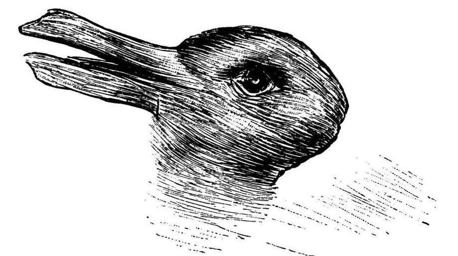 """""""兔鸭错觉""""插图"""